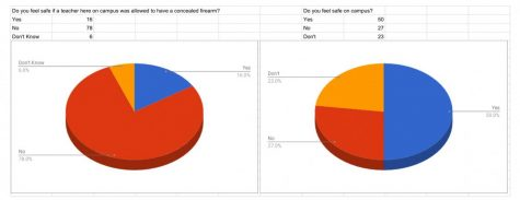 Safety on Campus Survey Results